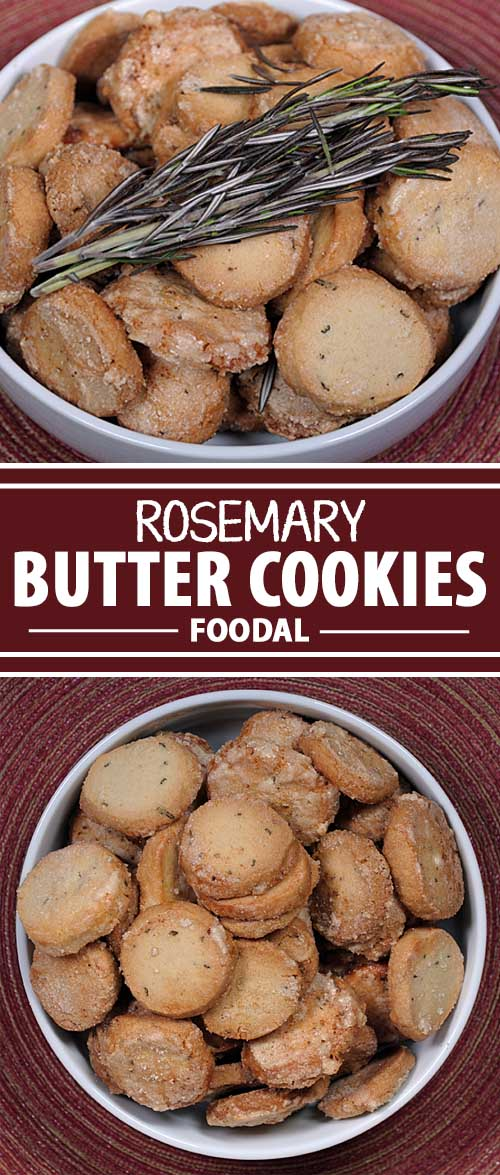 Do you love the savory sensation of rosemary? Ever thought of including it in a sweet cookie? Now is your chance with this delectable recipe that will surprise your tastebuds! Get the recipe now on Foodal.