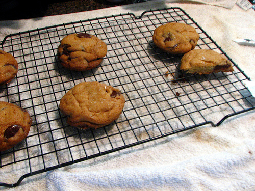 Chocolate chip cookies on a wire cooling rack | Foodal