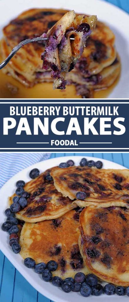 These fluffy pancakes include buttermilk which adds a rich, light sour flavor to the dough, complemented by the tartness of the fresh berries, which is especially nice topped with real maple syrup. Learn how to make this quick and easy recipe now with step by step directions on Foodal.