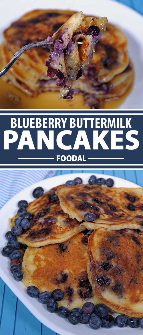 Blueberry Buttermilk Pancakes: Light and Fluffy Comfort Food