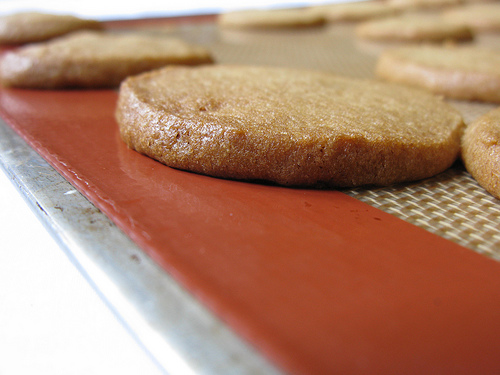 Vanilla Spice Cookies on a Silpat Baking Sheet