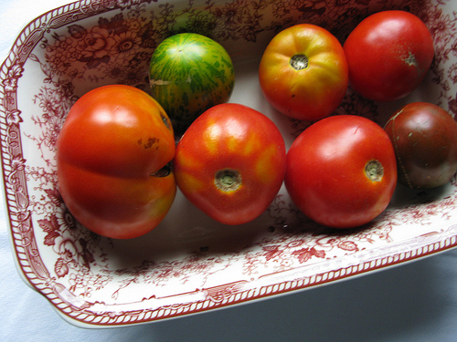 A close up view of ripe tomatoes on a plate.