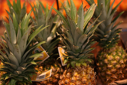 An image of fresh pineapples.