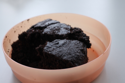 Slices of yummy chocolate cake in a shallow bowl.