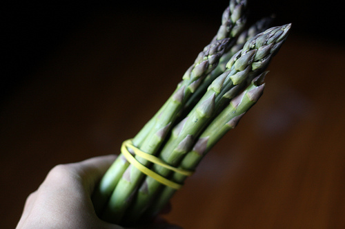 An image of a hand holding a bunch of fresh asparagus.