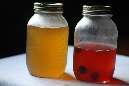 An image of two glass jars with various mixtures of kombucha tea.