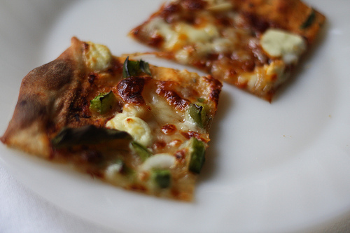 An image of a white plate with two slices of delicious pizza on it.