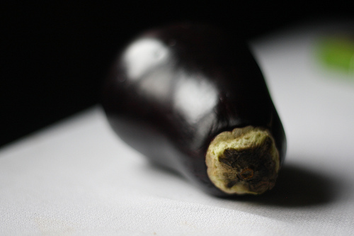An image of a single eggplant on a white counter.