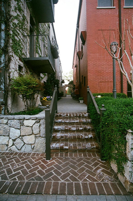 An image showing an alley between two buildings.
