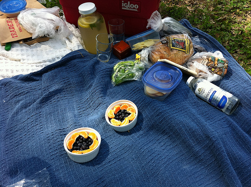 An image of a picnic setting with various food on a cloth.
