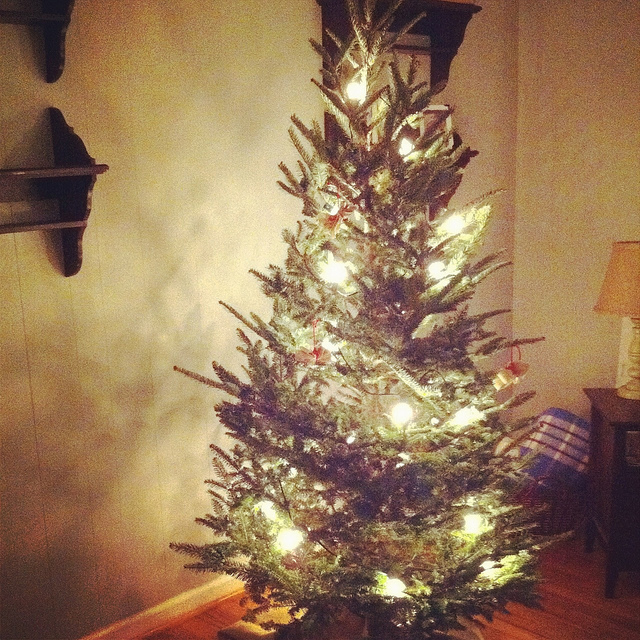 An image of a Christmas tree adorned with beautiful decorative lights.
