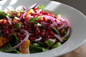 Satsuma Mandarin Orange, Red Onion, and Pomegranate Salad