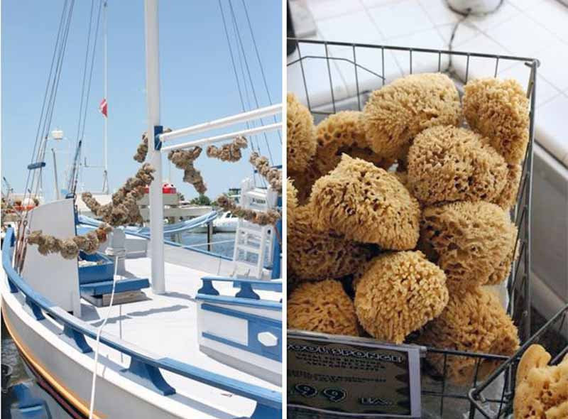 Dual image of a boat on the water on a bright, sunny day on the left, and a basket of sea sponges on the right.