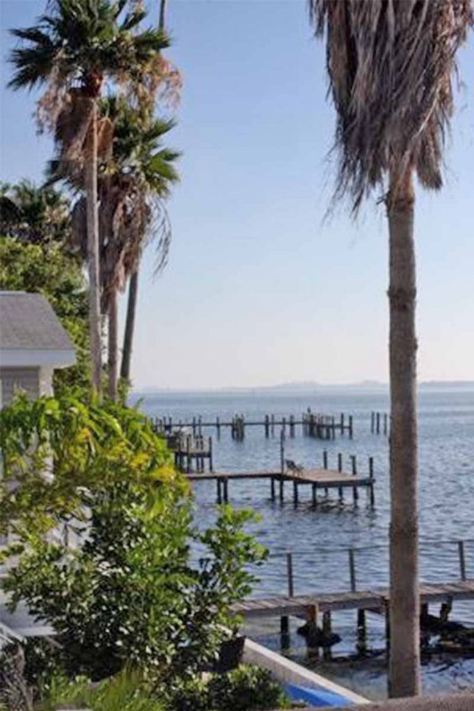 Palm trees, water, and wooden docks in Florida.