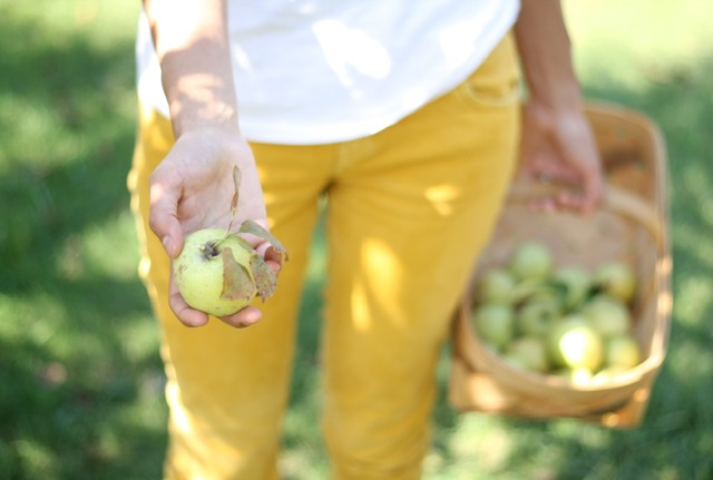 Shanna Holding an Apple | FoodLovesWriting.com