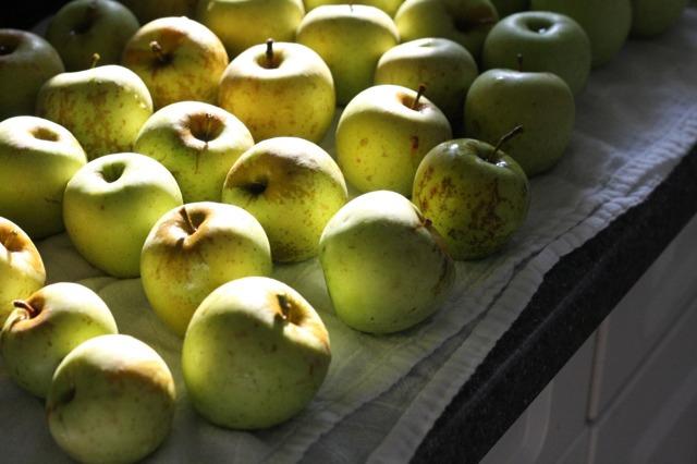 Freshly Washed Apples | FoodLovesWriting.com