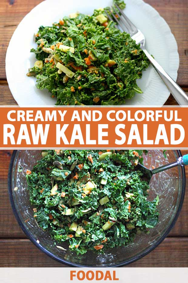 A collage of photos showing different views of a Creamy and Colorful Raw Kale Salad.
