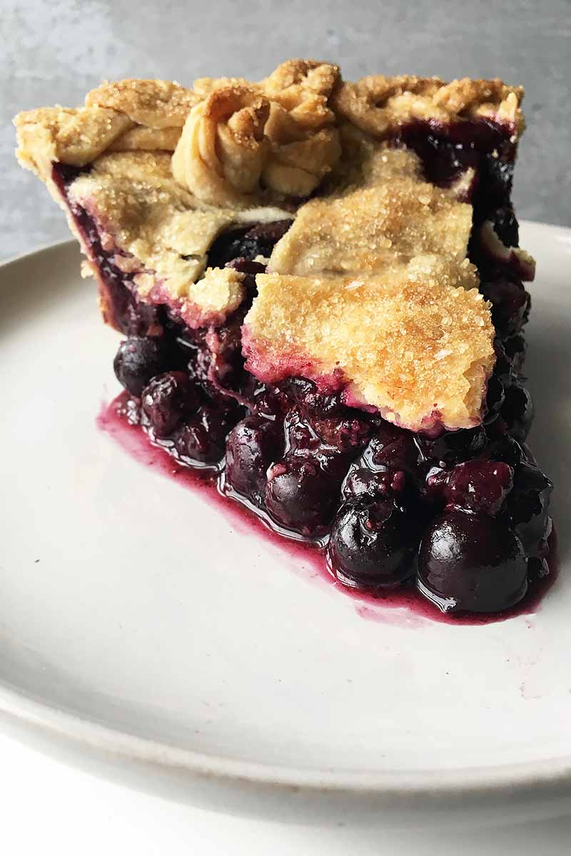 Vertical image of a thick slice of juicy blueberry pie.