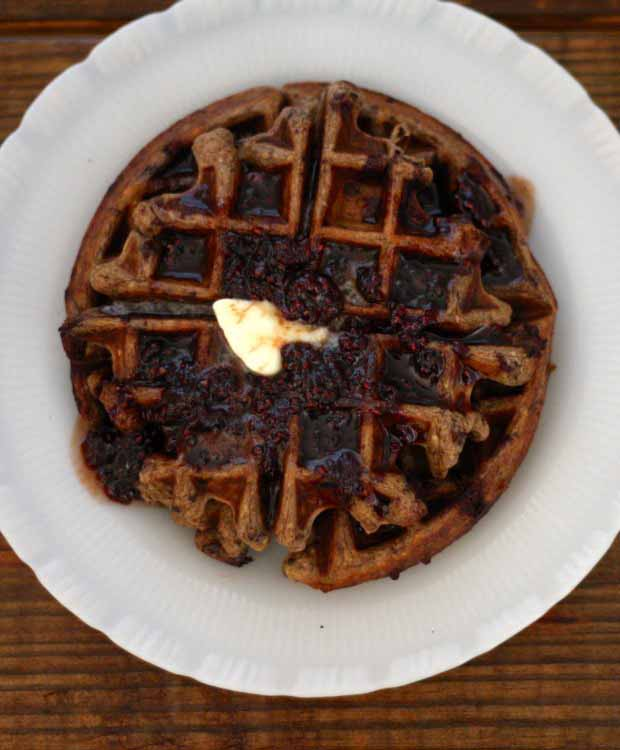 Top down view of a Chocolate Chip Einkorn Belgian Waffle on a white ceramic plate.