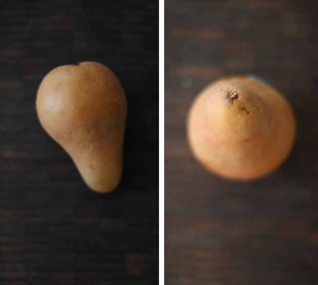 A collage of photos showing different views of a bocs pear on a dark wood table.