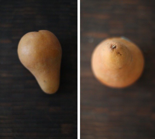 A collage of two still lifes showing bosc pears | Foodal