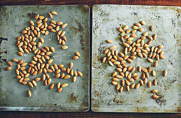 Almonds drying on cookie sheets.