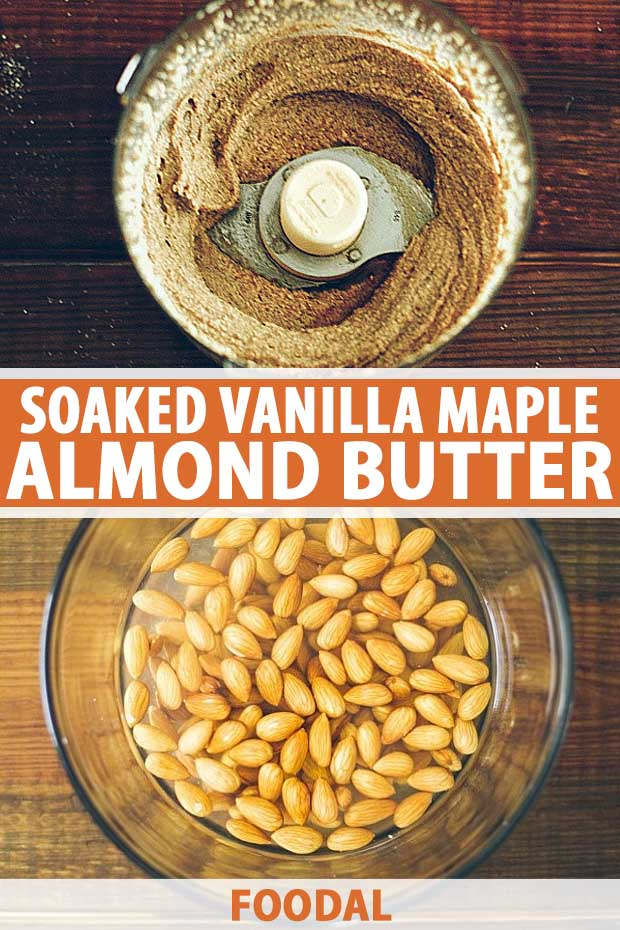 A collage of photos showing various steps to making a soaked vanilla maple almond butter.