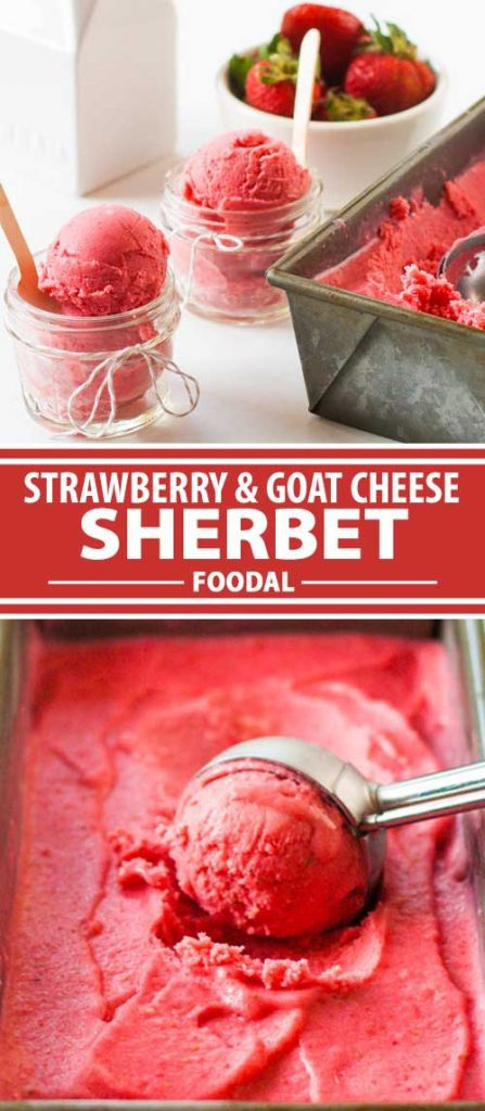 A collage of photos showing different views of a strawberry and goat cheese sherbet recipe.