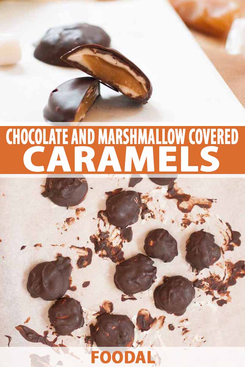 A collage of two photos showing a close up and an overhead shot of a chocolate and marshmallow covered caramel recipe.