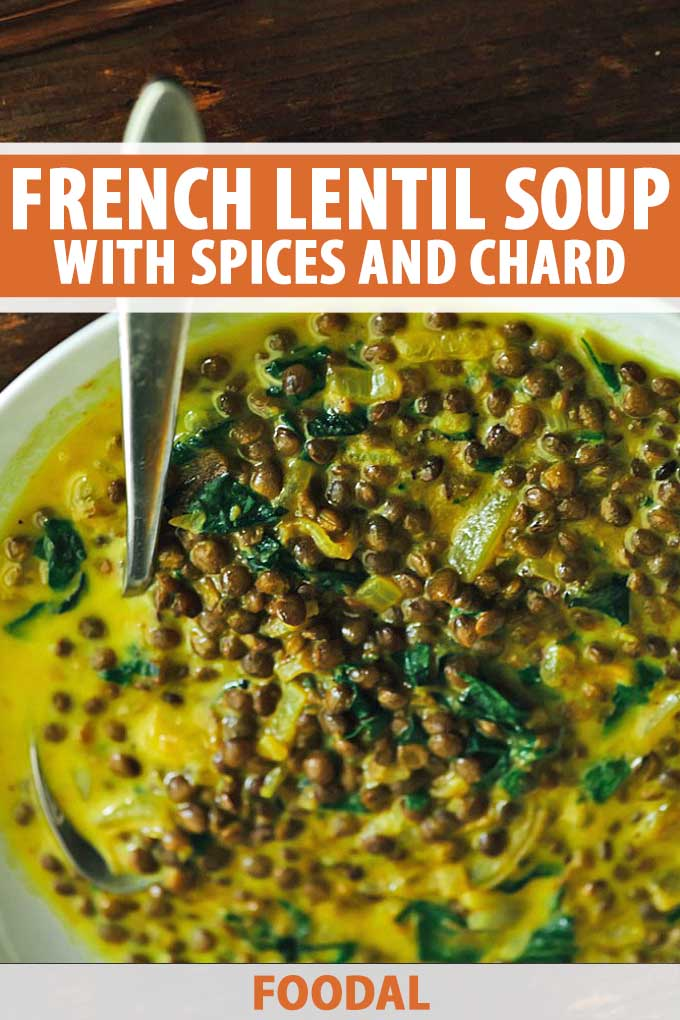 Close up of a French Lentil Soup made with chard, tumeric, and other spices.