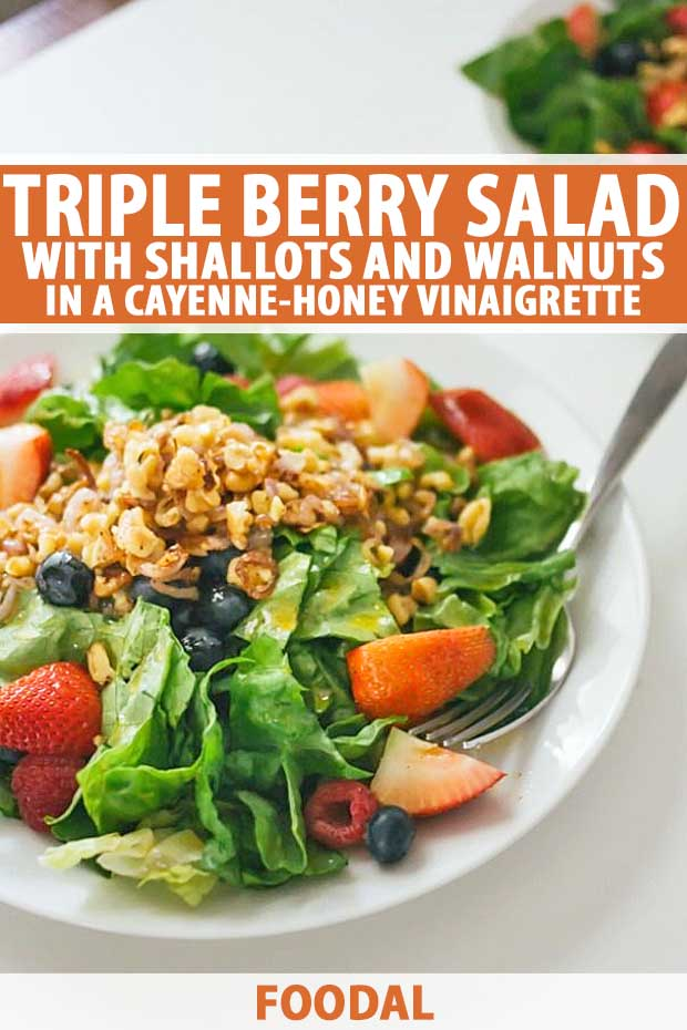 Close up of a triple berry salad showing three-quarters of the plate. A second plate full is barely visible in the background.