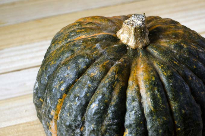 A Kobacha Pumpkin fresh from the garden | Foodal.com