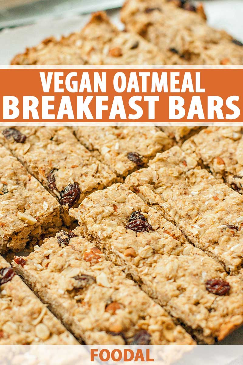A closeup image of a pan of baked vegan oatmeal bars sliced into 12 pieces.