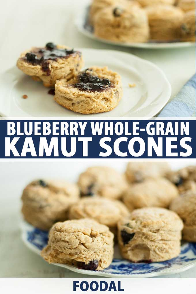 A collage of photos showing different views of a Blueberry Whole-Grain Kamut Scone recipe.