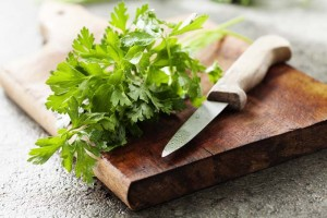 Parsley: The World's Favorite Herb