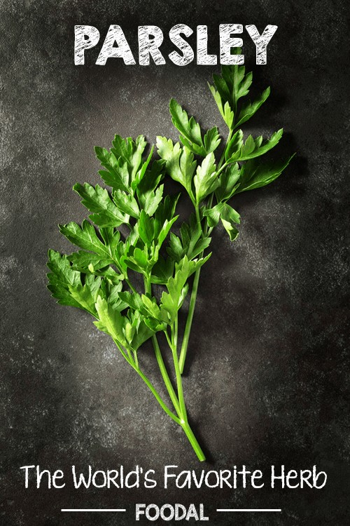 Every wondered what parsley can be used for other than a garnish or an ingredient in Italian food? Believe it or not, parsley has many medicinal benefits. Explore how this vivacious herb can be used to improve your well-being now. https://foodal.com/knowledge/parsley-worlds-favorite-herb/