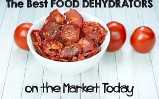 The Best Food Dehydrators on the Market Today