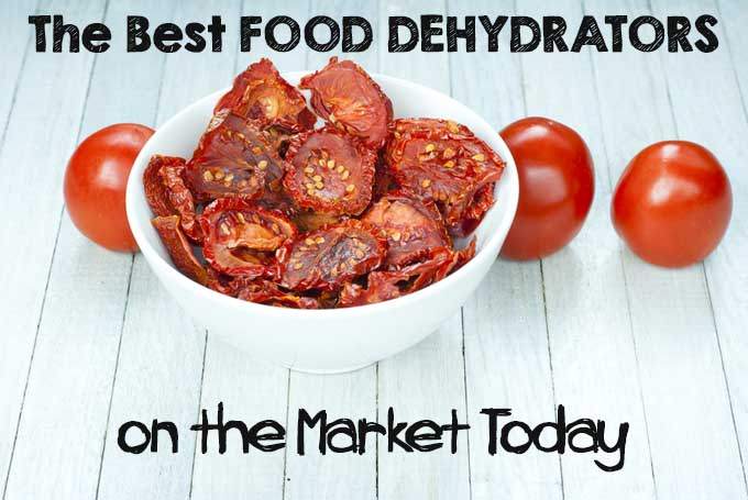 The Best Food Dehydrators on the Market Today | Foodal.com