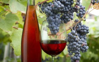 Chilled Wine with Grapes | Foodal.com
