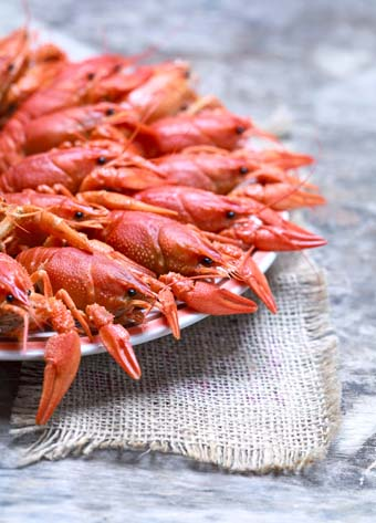 Numerous red crawfish on a plate with rustic burlap table cloth