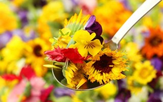 edible flowers 2 | Foodal.com