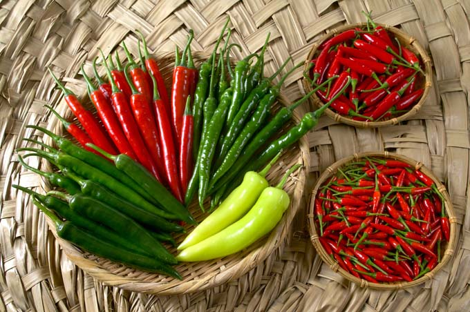 different types of hot peppers on a bamboo mat