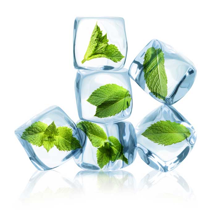 Mint leaves inside of ice cubes   Foodal
