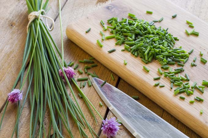 The cooking and health benefits of chives   Foodal.com