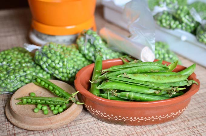 Ffresh peas being shelled and placed into freezer bags | Foodal.com