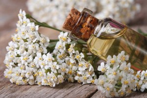 How to Make Beautiful and Tasty Herbed Oils