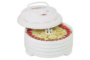 Preserve Summer's Freshness With a Nesco Gardenmaster FD-1040