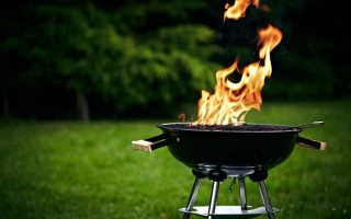 Charcoal or Gas: A Griller's Dilemma