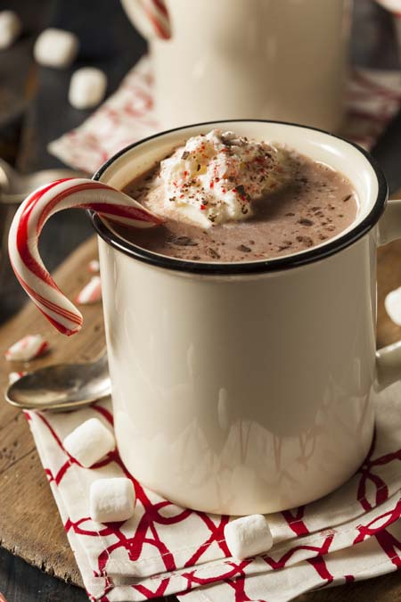 Peppermint Hot Cocoa with Chocolate Shavings | Foodal.com
