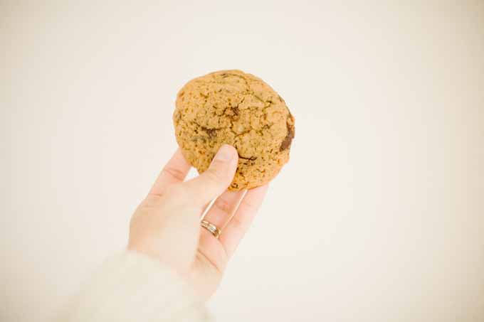 A human hand hold a einkorn chocolate chip cookie
